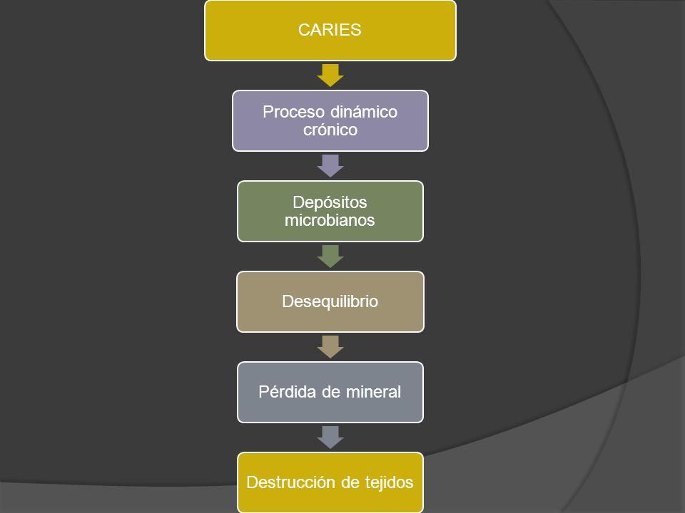 CARIES Proceso dinámico crónico Depósitos microbianos DesequilibrioPérdida de mineralDestrucción de tejidos