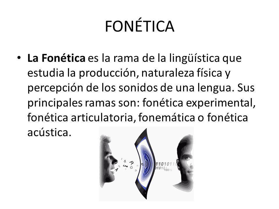 FONÉTICA La Fonética es la rama de la lingüística que estudia la producción, naturaleza física y percepción de los sonidos de una lengua.