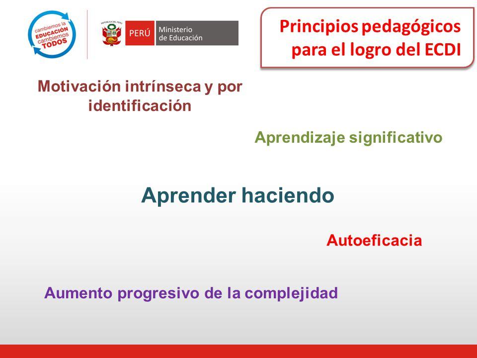 Principios pedagógicos para el logro del ECDI Aprender haciendo Aprendizaje significativo Aumento progresivo de la complejidad Autoeficacia Motivación