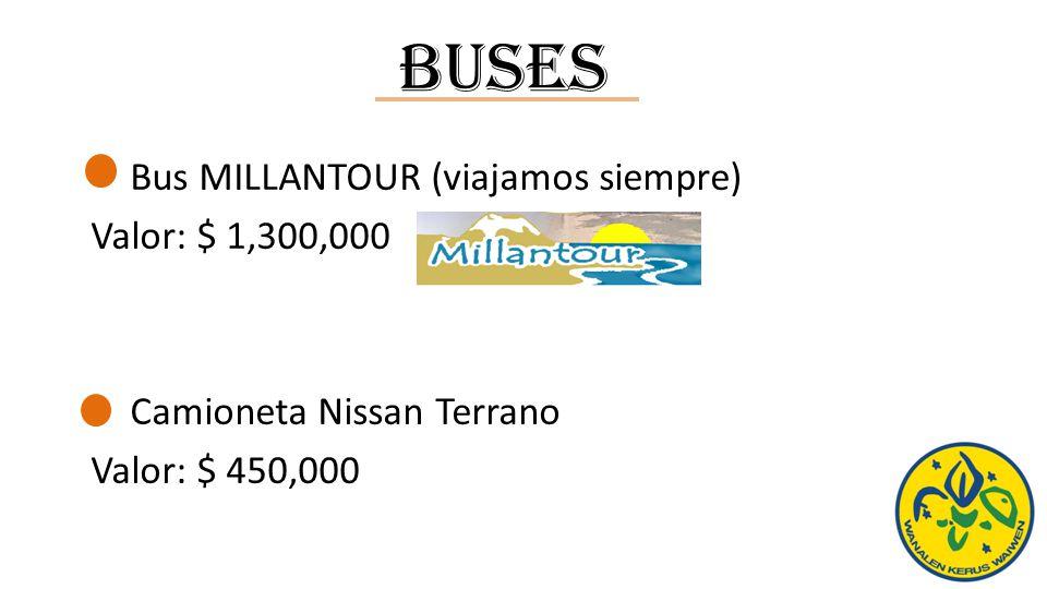 Buses Bus MILLANTOUR (viajamos siempre) Valor: $ 1,300,000 Camioneta Nissan Terrano Valor: $ 450,000