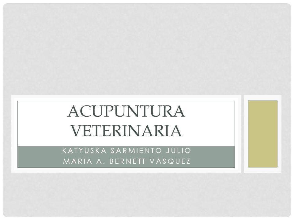 KATYUSKA SARMIENTO JULIO MARIA A. BERNETT VASQUEZ ACUPUNTURA VETERINARIA