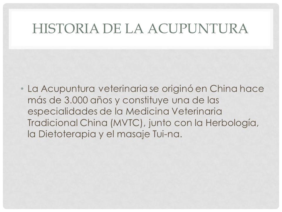 HISTORIA DE LA ACUPUNTURA La Acupuntura veterinaria se originó en China hace más de 3.000 años y constituye una de las especialidades de la Medicina Veterinaria Tradicional China (MVTC), junto con la Herbología, la Dietoterapia y el masaje Tui-na.
