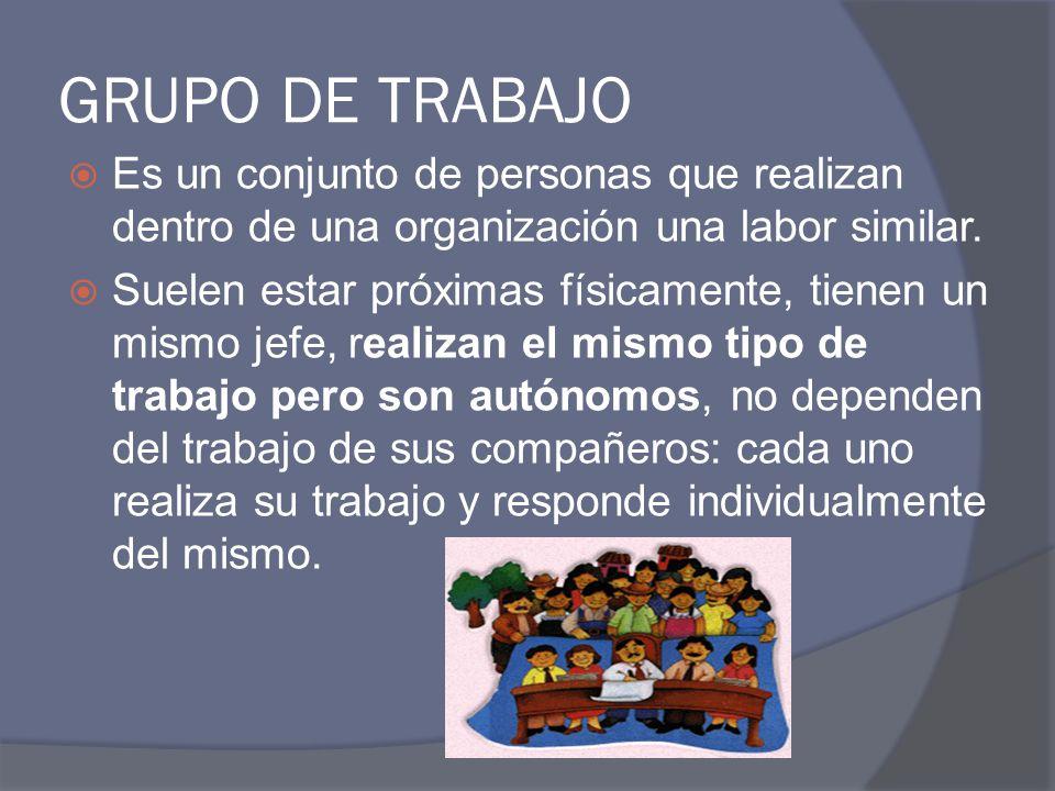 GRUPO DE TRABAJO Es un subsistema especializado dentro de una organización.
