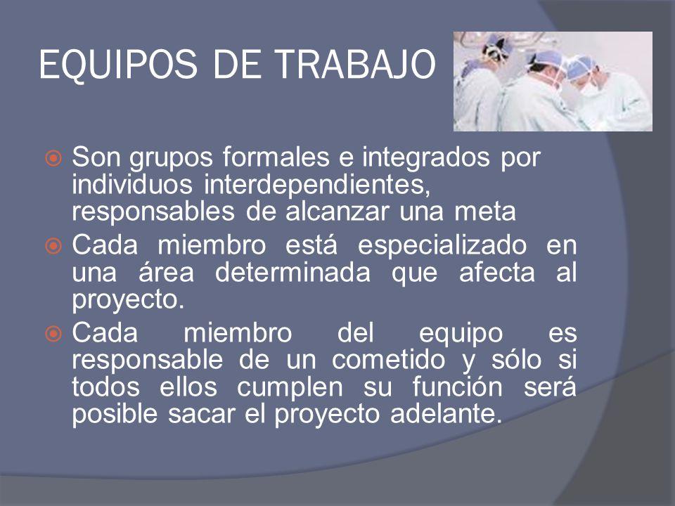 CARACTERÍSTICAS INDISPENSABLES EN EL EQUIPO DE TRABAJO OBJETIVOS CLAROS COMPROMISO COORDINACIÓN CONFIANZA COMUNICACIÓN COMPLEMENTARIE DAD ORGANIZACIÓN INTERACCIÓN LIDERAZGO APROPIADO COHESIÓN ASIGNACIÓN DE NORMAS