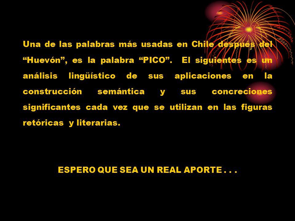 Una de las palabras más usadas en Chile después del Huevón, es la palabra PICO. El siguientes es un análisis lingüístico de sus aplicaciones en la con