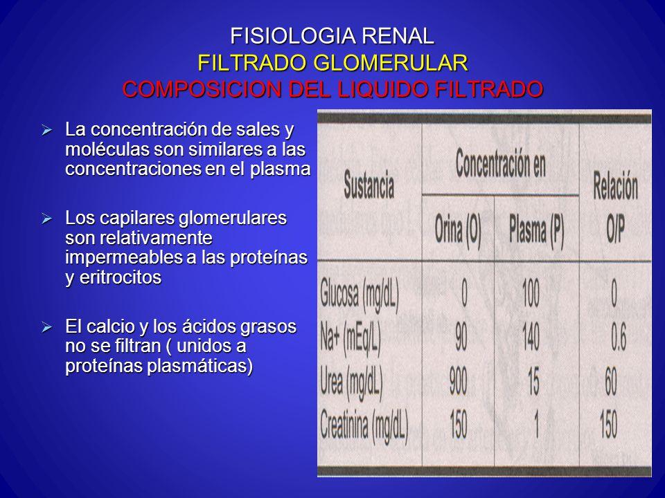 FISIOLOGIA RENAL FILTRADO GLOMERULAR COMPOSICION DEL LIQUIDO FILTRADO La concentración de sales y moléculas son similares a las concentraciones en el