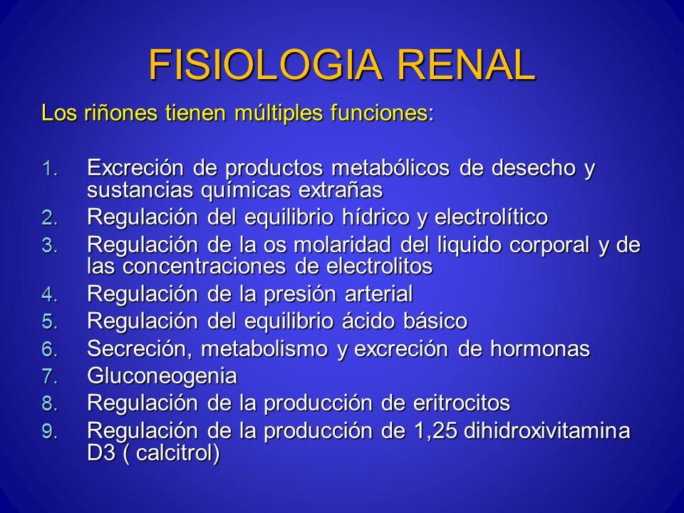 FISIOLOGIA RENAL FILTRACION GLOMERULAR Y FLUJO SANGUINEO RENAL CONTROL FISIOLOGICO Control humoral : Control humoral : Endotelina : péptido liberado de células endoteliales vasculares lesionadas ( vasoconstrictor, toxemia del embarazo, insuficiencia renal y uremia crónica) Endotelina : péptido liberado de células endoteliales vasculares lesionadas ( vasoconstrictor, toxemia del embarazo, insuficiencia renal y uremia crónica) La angiotensina II : contrae la arteriola eferente, aumenta la presión hidrostática, aumenta el filtrado glomerular y disminuye el flujo peritubular lo que aumenta la reabsorción de sodio y agua La angiotensina II : contrae la arteriola eferente, aumenta la presión hidrostática, aumenta el filtrado glomerular y disminuye el flujo peritubular lo que aumenta la reabsorción de sodio y agua Oxido nítrico ( derivado de endotelio): reduce la resistencia vascular Oxido nítrico ( derivado de endotelio): reduce la resistencia vascular Prostaglandinas ( PGE2 y PGI2) y bradicinina: producen vaso dilatación aumentan el flujo y el filtrado glomerular, amortiguan el efecto de angiotensina II sobre arteriolas aferentes Prostaglandinas ( PGE2 y PGI2) y bradicinina: producen vaso dilatación aumentan el flujo y el filtrado glomerular, amortiguan el efecto de angiotensina II sobre arteriolas aferentes