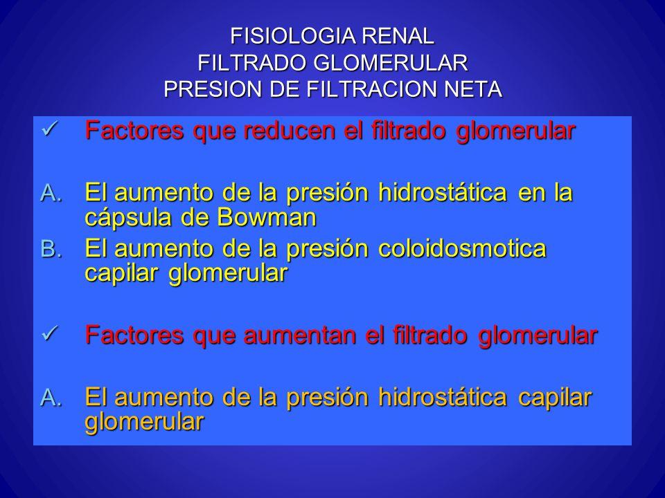 FISIOLOGIA RENAL FILTRADO GLOMERULAR PRESION DE FILTRACION NETA Factores que reducen el filtrado glomerular Factores que reducen el filtrado glomerula