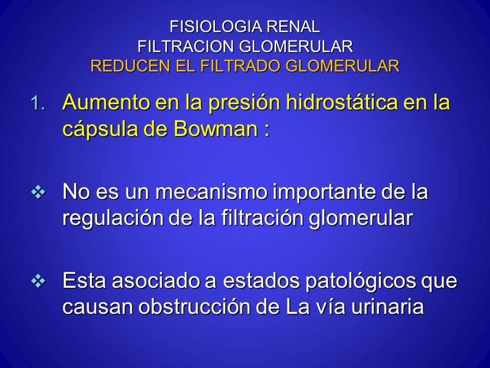 FISIOLOGIA RENAL FILTRACION GLOMERULAR REDUCEN EL FILTRADO GLOMERULAR 1. Aumento en la presión hidrostática en la cápsula de Bowman : No es un mecanis