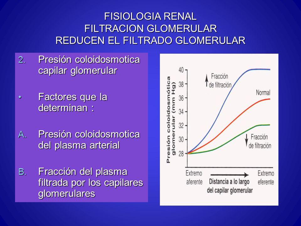 FISIOLOGIA RENAL FILTRACION GLOMERULAR REDUCEN EL FILTRADO GLOMERULAR 2. Presión coloidosmotica capilar glomerular Factores que la determinan : Factor