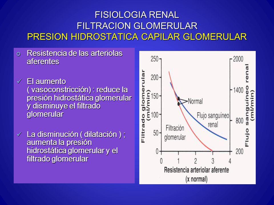 FISIOLOGIA RENAL FILTRACION GLOMERULAR PRESION HIDROSTATICA CAPILAR GLOMERULAR o Resistencia de las arteriolas aferentes El aumento ( vasoconstricción