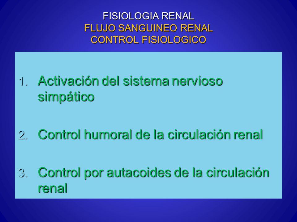 FISIOLOGIA RENAL FLUJO SANGUINEO RENAL CONTROL FISIOLOGICO 1. Activación del sistema nervioso simpático 2. Control humoral de la circulación renal 3.