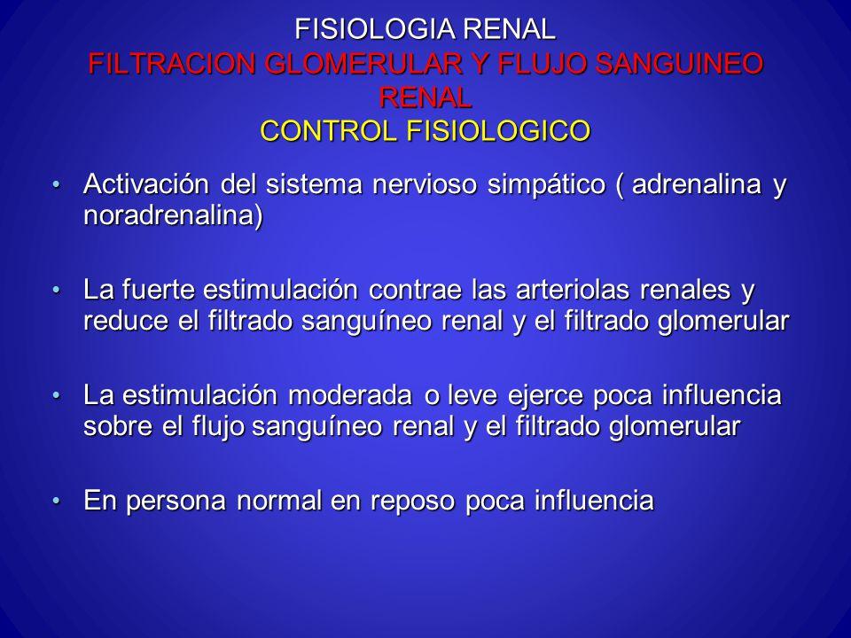 FISIOLOGIA RENAL FILTRACION GLOMERULAR Y FLUJO SANGUINEO RENAL CONTROL FISIOLOGICO Activación del sistema nervioso simpático ( adrenalina y noradrenal