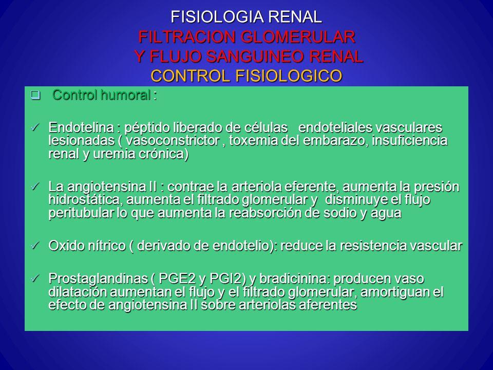 FISIOLOGIA RENAL FILTRACION GLOMERULAR Y FLUJO SANGUINEO RENAL CONTROL FISIOLOGICO Control humoral : Control humoral : Endotelina : péptido liberado d