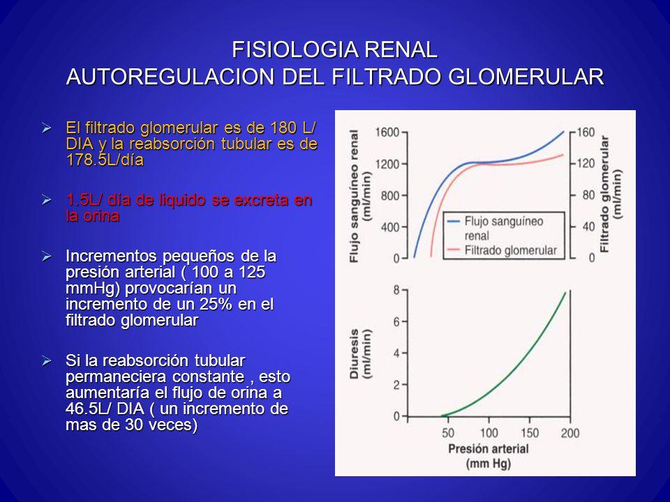 FISIOLOGIA RENAL AUTOREGULACION DEL FILTRADO GLOMERULAR El filtrado glomerular es de 180 L/ DIA y la reabsorción tubular es de 178.5L/día El filtrado