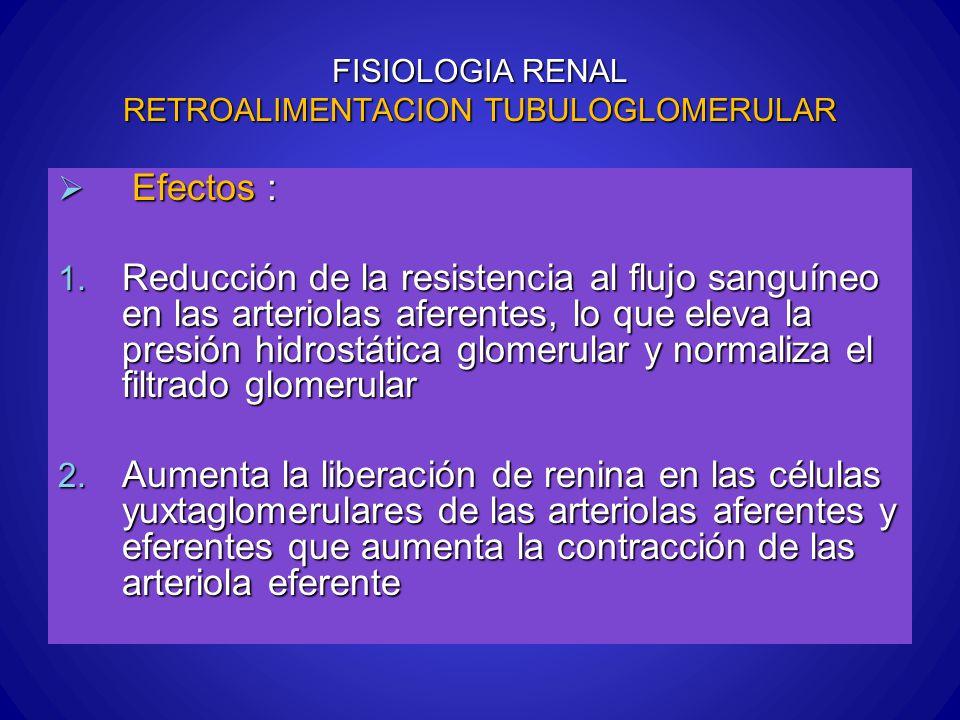 FISIOLOGIA RENAL RETROALIMENTACION TUBULOGLOMERULAR Efectos : Efectos : 1. Reducción de la resistencia al flujo sanguíneo en las arteriolas aferentes,