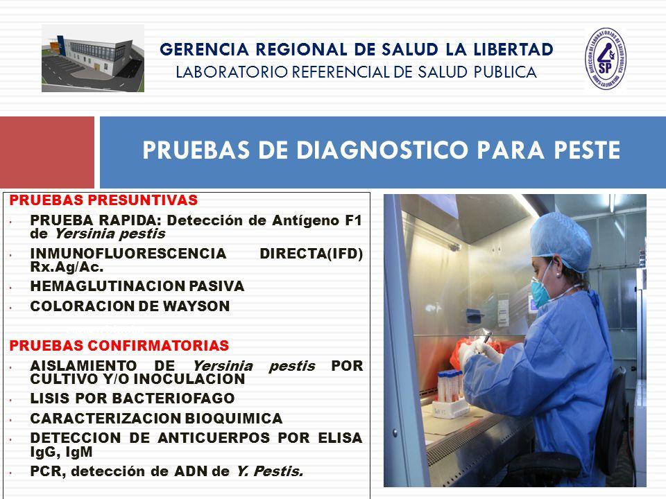 GERENCIA REGIONAL DE SALUD LA LIBERTAD LABORATORIO REFERENCIAL DE SALUD PUBLICA PRUEBAS DE DIAGNOSTICO PARA PESTE caract. bipolar PRUEBAS PRESUNTIVAS