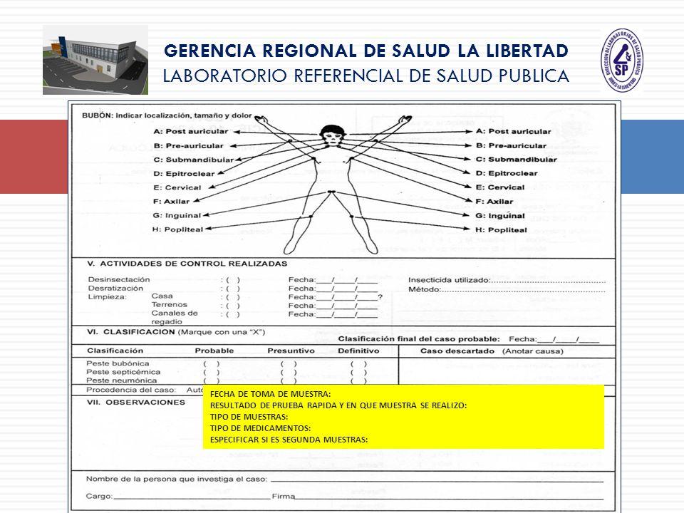 GERENCIA REGIONAL DE SALUD LA LIBERTAD LABORATORIO REFERENCIAL DE SALUD PUBLICA FECHA DE TOMA DE MUESTRA: RESULTADO DE PRUEBA RAPIDA Y EN QUE MUESTRA