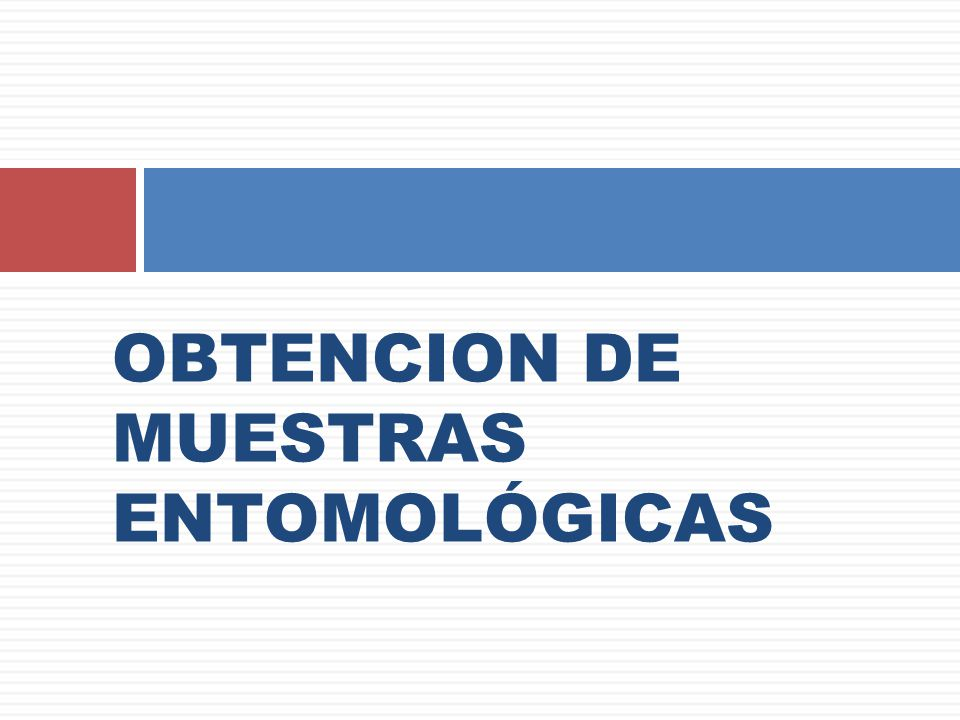 OBTENCION DE MUESTRAS ENTOMOLÓGICAS