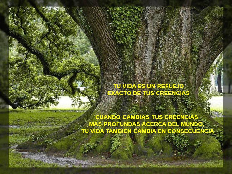 TU VIDA ES UN REFLEJO EXACTO DE TUS CREENCIAS CUANDO CAMBIAS TUS CREENCIAS MÁS PROFUNDAS ACERCA DEL MUNDO, TU VIDA TAMBIEN CAMBIA EN CONSECUENCIA TU VIDA TAMBIEN CAMBIA EN CONSECUENCIA
