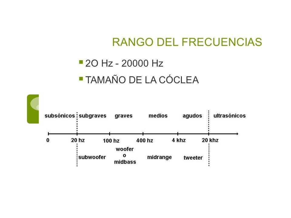 RANGO DEL FRECUENCIAS 2O Hz - 20000 Hz TAMAÑO DE LA CÓCLEA