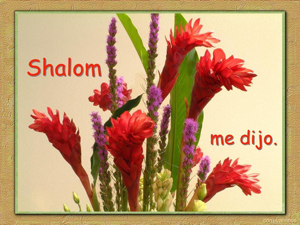 Shalom Shalom me dijo.