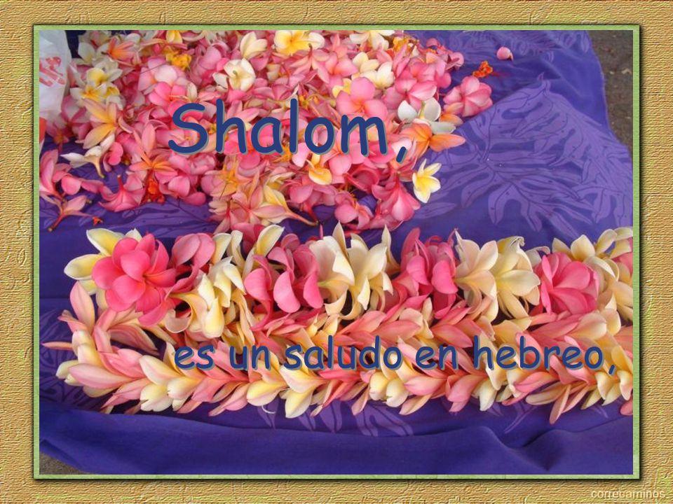 es un saludo en hebreo, Shalom,