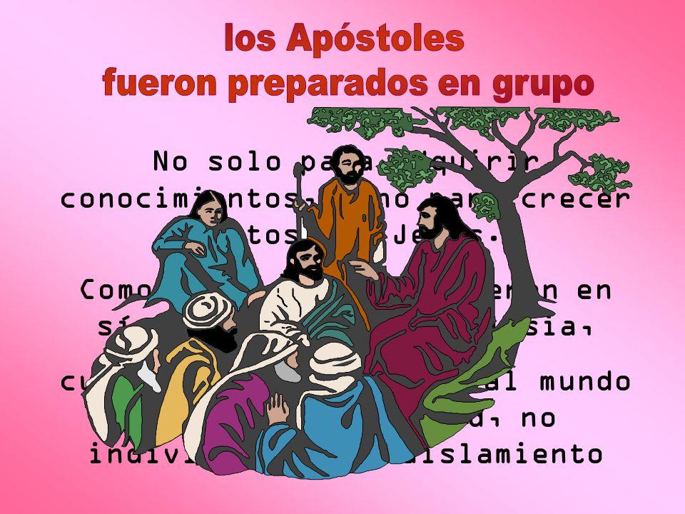 No solo para adquirir conocimientos, sino para crecer juntos con Jesús. Como grupo se convirtieron en símbolo de toda la Iglesia, cuyo deber es irradi
