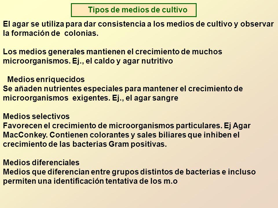 Tipos de medios de cultivo El agar se utiliza para dar consistencia a los medios de cultivo y observar la formación de colonias.