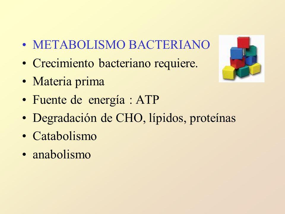 METABOLISMO BACTERIANO Crecimiento bacteriano requiere.