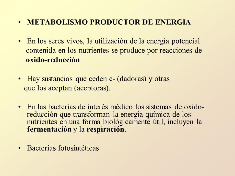 METABOLISMO PRODUCTOR DE ENERGIA En los seres vivos, la utilización de la energía potencial contenida en los nutrientes se produce por reacciones de oxido-reducción.
