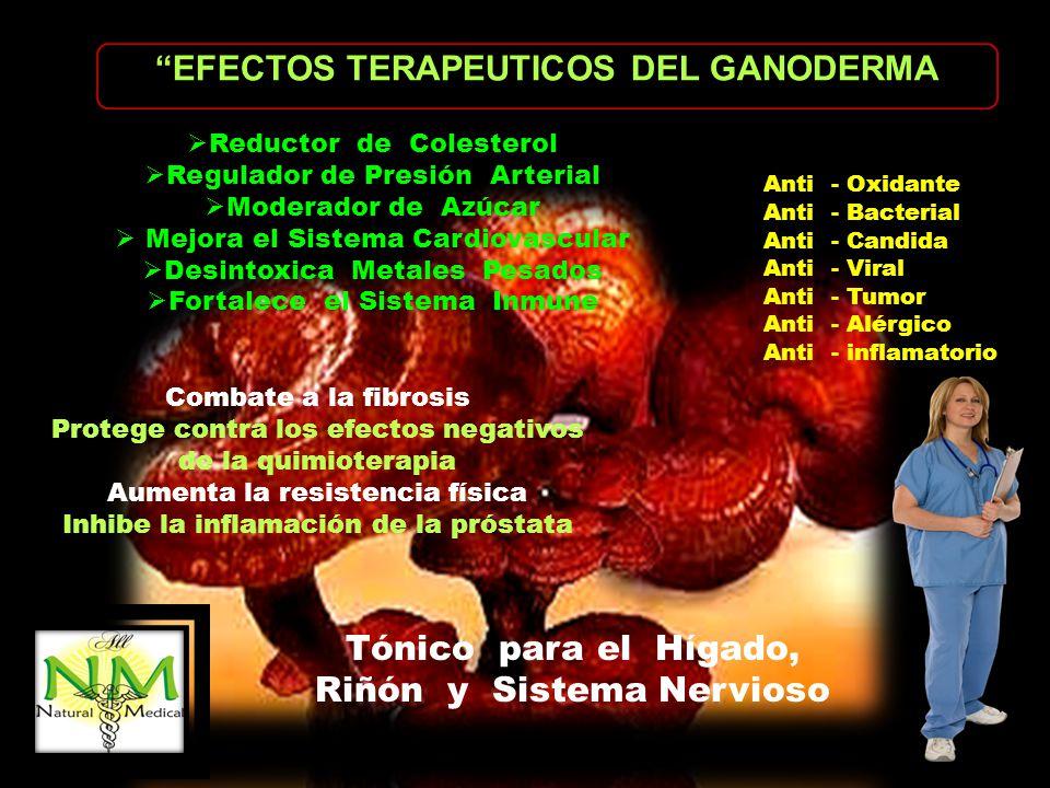 EFECTOS TERAPEUTICOS DEL GANODERMA Anti - Oxidante Anti - Bacterial Anti - Candida Anti - Viral Anti - Tumor Anti - Alérgico Anti - inflamatorio Reduc
