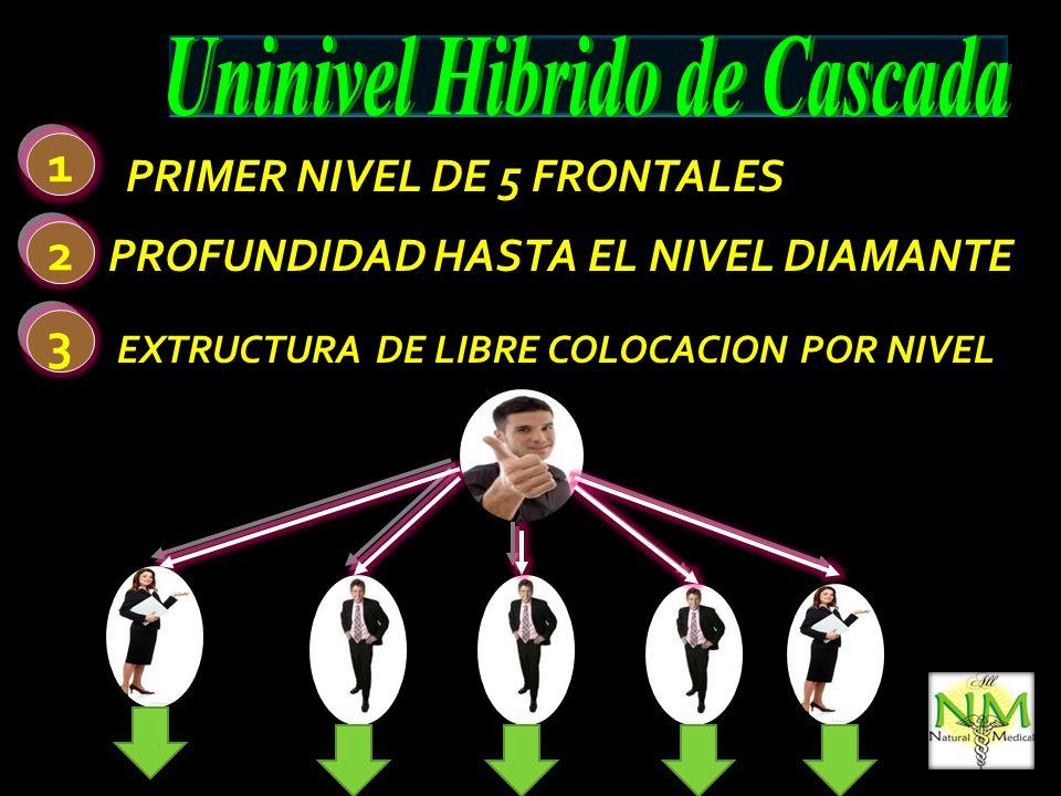 PAQUETE UNICO DE INGRESO PAQUETE UNICO DE INGRESO PUBLICIDAD MEMBRECIA (CODIGO) CODIGO PARA LIQUIDACION DE REGALIAS CODIGO DE CLIENTE 30 P.V.