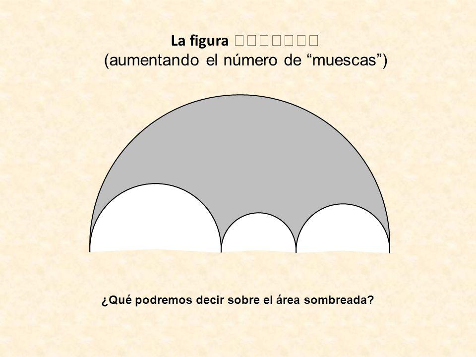 La figura (aumentando el número de muescas) ¿Qué podremos decir sobre el área sombreada?