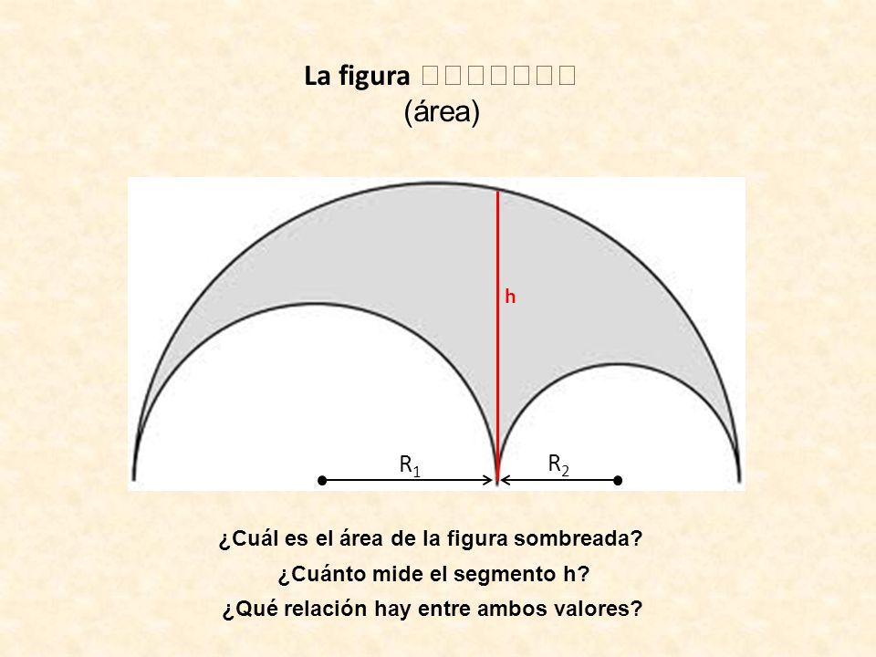 (área) R1R1 R2R2 ¿Cuál es el área de la figura sombreada? ¿Cuánto mide el segmento h? h ¿Qué relación hay entre ambos valores?