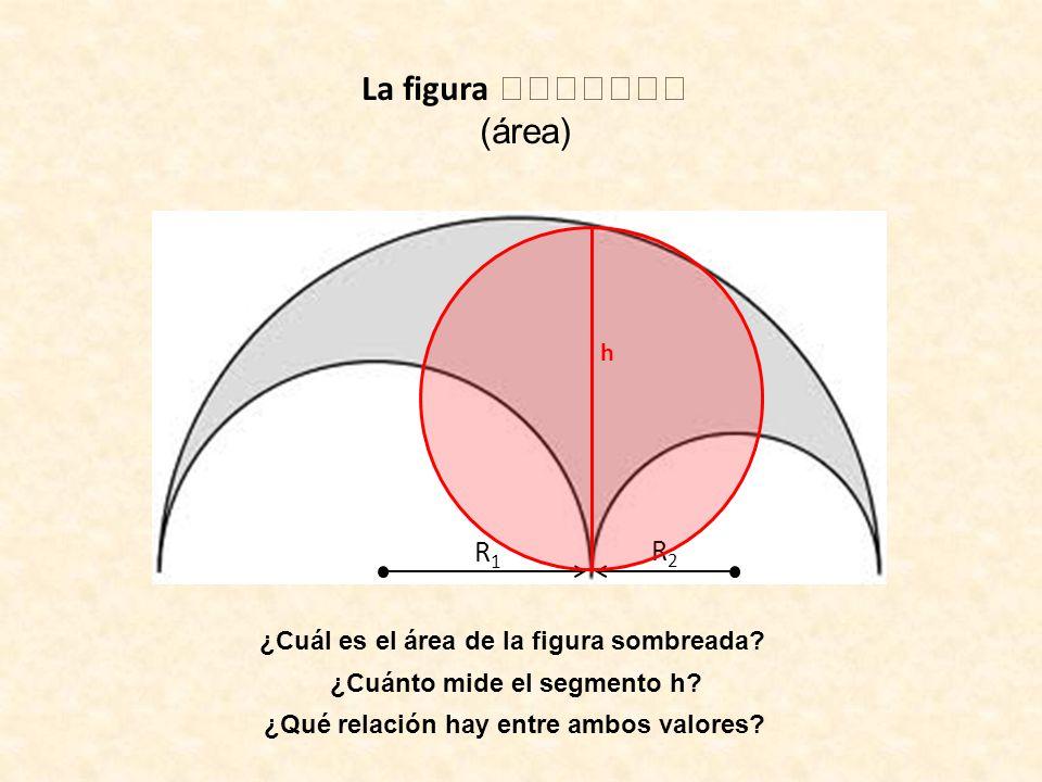 La figura (área) R1R1 R2R2 ¿Cuál es el área de la figura sombreada? ¿Cuánto mide el segmento h? h ¿Qué relación hay entre ambos valores?