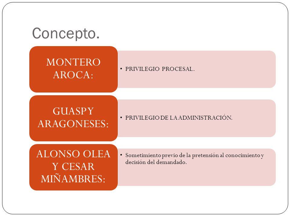 FORMA Y CONTENIDO DE R.P.