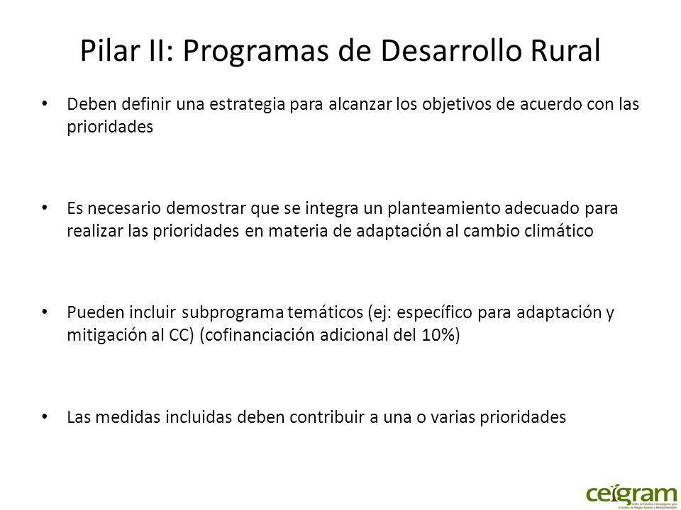 Pilar II: Programas de Desarrollo Rural Deben definir una estrategia para alcanzar los objetivos de acuerdo con las prioridades Es necesario demostrar