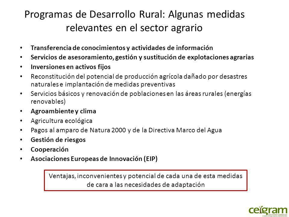 Programas de Desarrollo Rural: Algunas medidas relevantes en el sector agrario Transferencia de conocimientos y actividades de información Servicios d