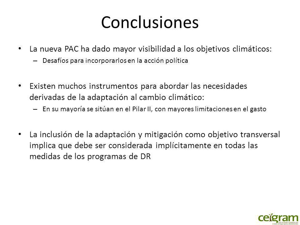 Conclusiones La nueva PAC ha dado mayor visibilidad a los objetivos climáticos: – Desafíos para incorporarlos en la acción política Existen muchos ins