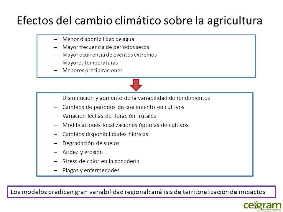Acciones de adaptación Acciones que son adoptadas sin apoyo: – Modificaciones fechas de siembra o recolección – Cambios a cultivos menos demandantes de agua Acciones que requieren apoyos – Incentivos – Capacitación y capital humano – Seguros agrarios