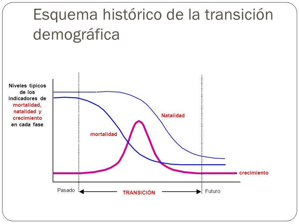 Natalidad mortalidad crecimiento TRANSICIÓN Pasado Futuro Niveles típicos de los indicadores de mortalidad, natalidad y crecimiento en cada fase Esque