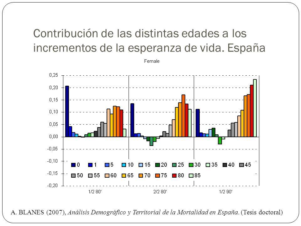 Contribución de las distintas edades a los incrementos de la esperanza de vida. España A. BLANES (2007), Análisis Demográfico y Territorial de la Mort