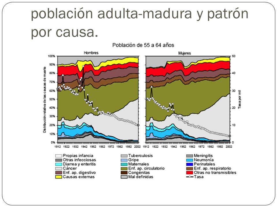 Tasas de mortalidad de la población adulta-madura y patrón por causa.