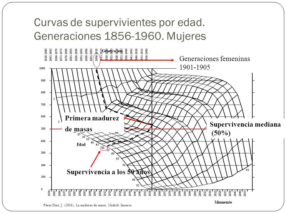 Supervivencia mediana (50%) Supervivencia a los 50 años Primera madurez de masas Generaciones femeninas 1901-1905 Curvas de supervivientes por edad. G