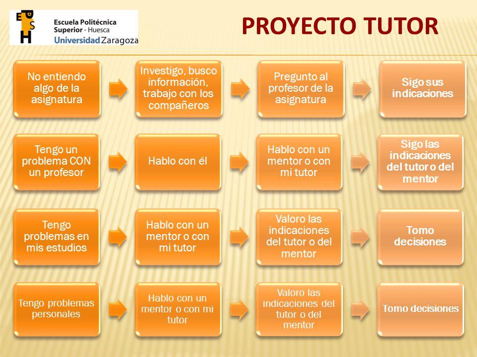 PLAN DE TRABAJO PROYECTO TUTOR 2012-2013