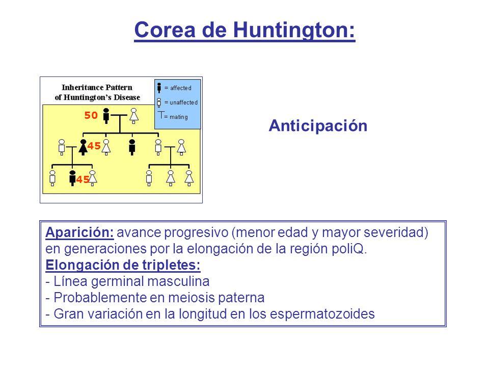 Corea de Huntington: Anticipación 50 45 Aparición: avance progresivo (menor edad y mayor severidad) en generaciones por la elongación de la región pol
