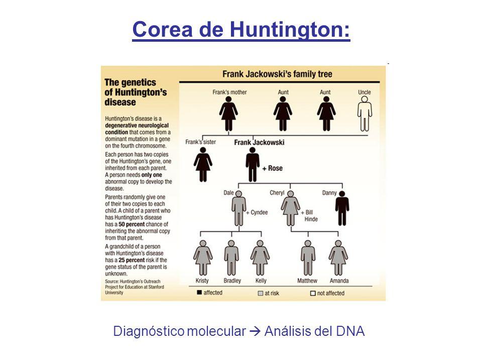 Diagnóstico molecular Análisis del DNA