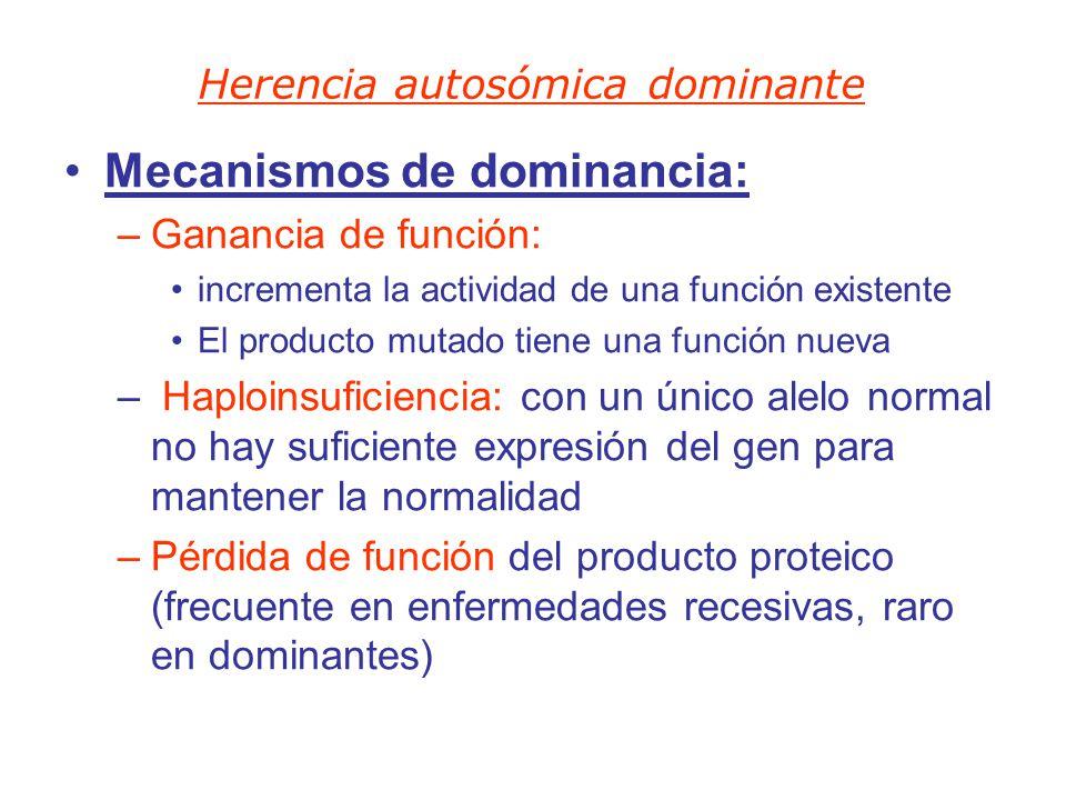 Mecanismos de dominancia: –Ganancia de función: incrementa la actividad de una función existente El producto mutado tiene una función nueva – Haploins