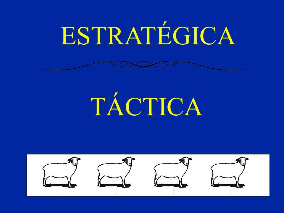 ESTRATÉGICA TÁCTICA